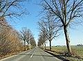 Hamm, Germany - panoramio (5215).jpg