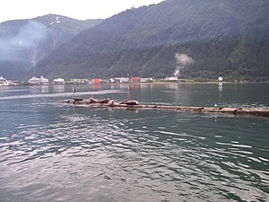 Environmental impact of shipping - Cruise ship haze over Juneau, Alaska