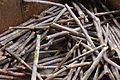 Harvested sugar cane stalks, Alexandria, LA IMG 4237.JPG