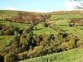 Hillside from Braich-llwyd - geograph.org.uk - 600925.jpg