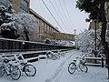 Hirosaki University in winter - panoramio.jpg