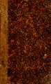Historia de la conquista de Méjico - con un bosquejo preliminar de la civilización de los antiguos mejicanos y la vida del conquistador Hernando Cortés (IA delaconquistadem01pres).pdf