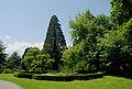 Hollenegg Park.jpg
