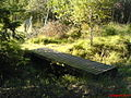 Holzbrücke im Torfmoor.JPG