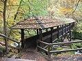 Holzbruecke ueber Irreler Wasserfaelle (Wooden Bridge over Irrel Waterfall) - geo.hlipp.de - 14711.jpg