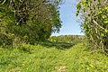 Horn-Bad Meinberg - 2015-05-10 - LIP-028 Silberbachtal mit Ziegenberg (51).jpg