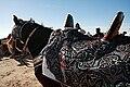 Horse saddle Sahara Festival.jpg