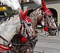 Horses Bedecked for Carriage Ride - Rynek (Market Square) - Krakow - Poland - 02 (9195701512).jpg