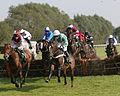 Horses racing (2881588069).jpg