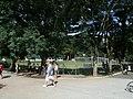 Horto Florestal, São Paulo, Brasil - panoramio (6).jpg