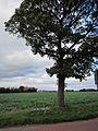 Hoscar Moss Road, Lathom (2).JPG