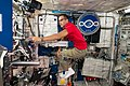 ISS-53 Joseph Acaba works inside the Columbus lab.jpg