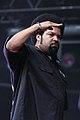 Ice Cube (6934145550).jpg
