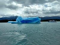 Iceberg and boat lago argentino.jpg