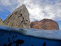Ilha da Trindade dentro e fora da água.jpg
