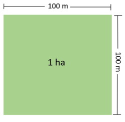 Illustration of One Hectare.png