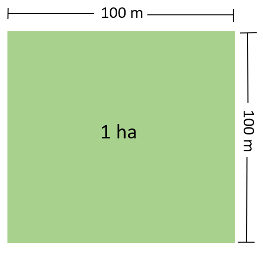 Illustration of One Hectare