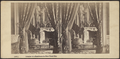 Interior of a Residence, New York City, from Robert N. Dennis collection of stereoscopic views.png