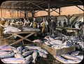 Interior of salmon cannery (3707835865).jpg