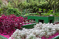 JBRJ Jardim Sensorial 02.jpg