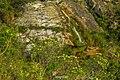 Jaboticatubas - State of Minas Gerais, Brazil - panoramio (95).jpg