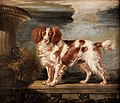 James Ward - Portrait of Dash, a Favourite Spaniel, the Property of Lady Frances Vane-Tempest - Google Art Project.jpg