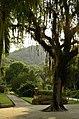 Jardim Botânico, Rio de Janeiro - State of Rio de Janeiro, Brazil - panoramio (9).jpg