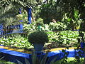 Jardin de majorelle 027.jpg