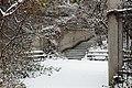Jardin naturel (Paris) sous la neige 06.jpg