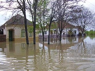 Timiș River - Flood in Jaša Tomić in 2005