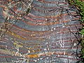 Jaspilite banded iron formation (Soudan Iron-Formation, Neoarchean, ~2.69 Ga; Stuntz Bay Road outcrop, Soudan Underground State Park, Soudan, Minnesota, USA) 4 (18602592244).jpg