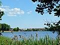 Jezioro Sępoleńskie widok z brzegu. - panoramio (2).jpg