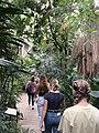 JungleDomeAviary.jpg
