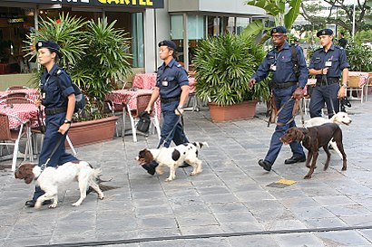How to get to Police K-9 Unit with public transport- About the place