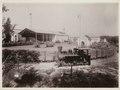 KITLV - 30205 - Kurkdjian, N.V. Photografisch Atelier - Soerabaja - Sugar plantation in East Java - 1921.tif