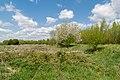 Kalletal - 2015-05-02 - LIP-013 Aberg-Herrengraben (34).jpg