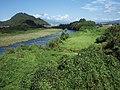Kano river 20110918 B.jpg