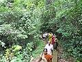Karimbam biodiversity centre2.jpg