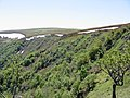 Kastelberg versant alsacien.jpg