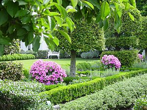Jacqueline Kennedy Garden - Summer in the Jacqueline Kennedy Garden. Magnolia and Littleleaf lindens underplanted with ageratum and boxwood. The white painted  cast iron Rococo Revival garden bench has been on the White House grounds since 1850.