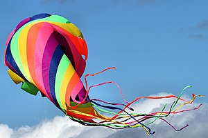 Kite - Knebworth Country Show 2013 (9484355833).jpg