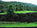 Konkan Railway - views from train on a Monsoon (33).JPG