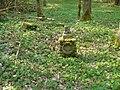 Korzystno - cmentarz w lesie - panoramio.jpg