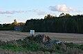 Kultusekivi Anija vallas Partsaare külas (nr 17374).jpg
