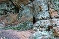 Līgatne - panoramio (12).jpg