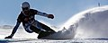 LG Snowboard FIS World Cup (5435328943).jpg
