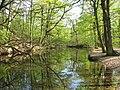 Lac du fer à cheval - Batterie du Ravin de Bouviers.jpg
