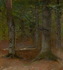 Study of Forest