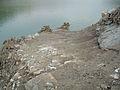 Lago Brugneto in periodo di siccità - panoramio (4).jpg