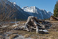 Lago del Predil Strunk und Monte Canin 10032015 0506.jpg